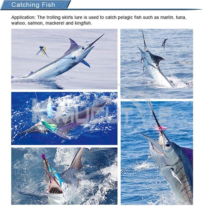 第二类Catching Fish