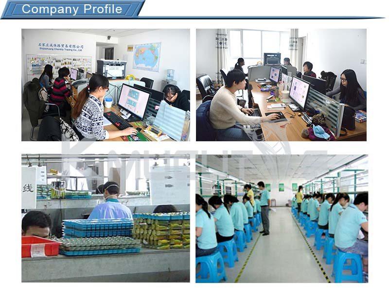 第二类Company Profile