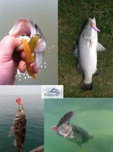 Fishing tackle Sourcing agent factory audits form china