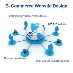 Custom B2B B2C Ecommerce Website Design And Development Service